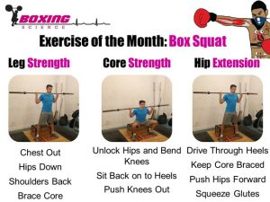 Boxing-Science-Exercise-of-the-Month-Box-Squat