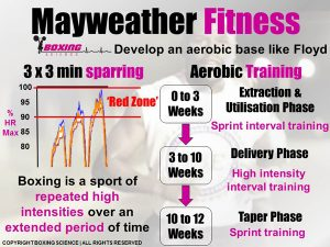 Boxing-Science-Mayweather-Fitness