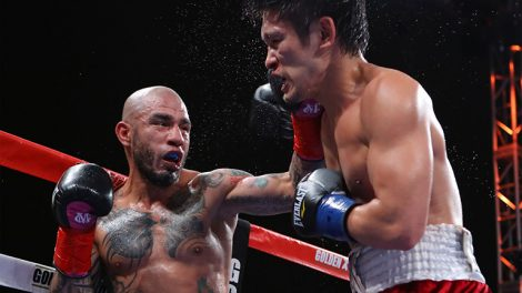 Miguel Cotto