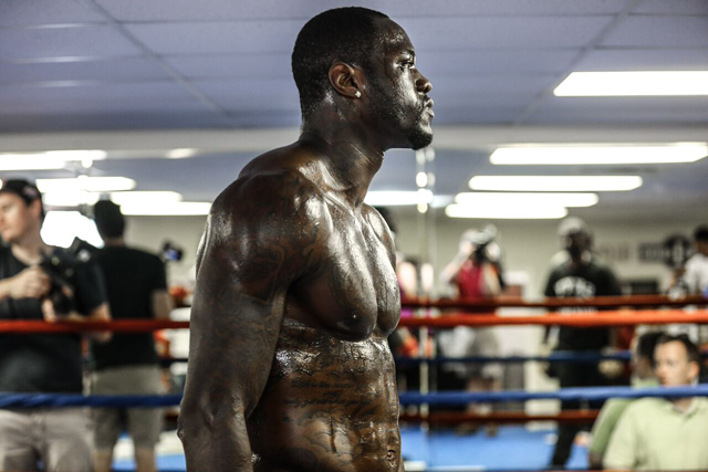Deontay Wilder pic