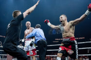 World Boxing Super Series